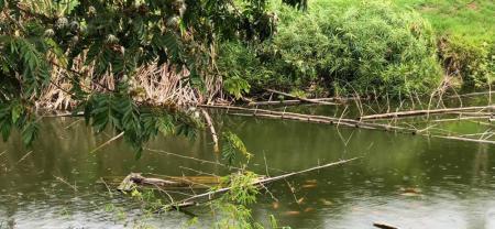 El proyecto que busca salvar las fuentes hídricas de Santander de la contaminación